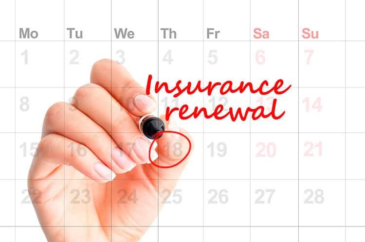 insurance renewal date